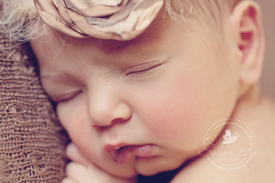 Austin one week old newborn photography session.