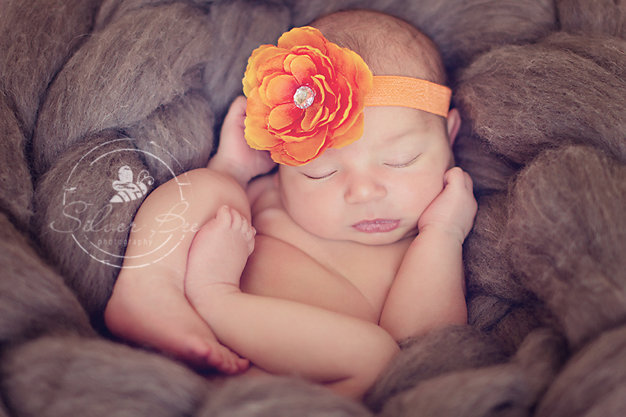 Austin Texas one week old newborn girl posing in gray plush pretzel with orange flower bow.