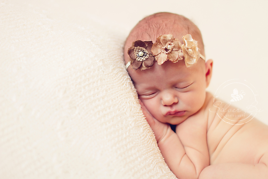 Preemie newborn baby girl photography session posing on cream lace back drop with brown triple flower headband in Austin Texas.
