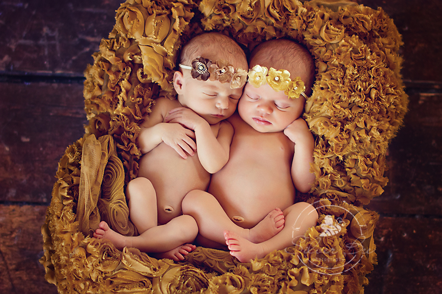 newborn twin photography austin texas