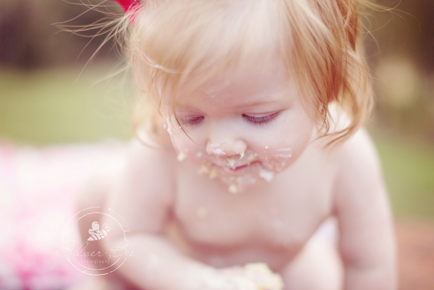 Best baby photographer austin texas for one year old cake smash