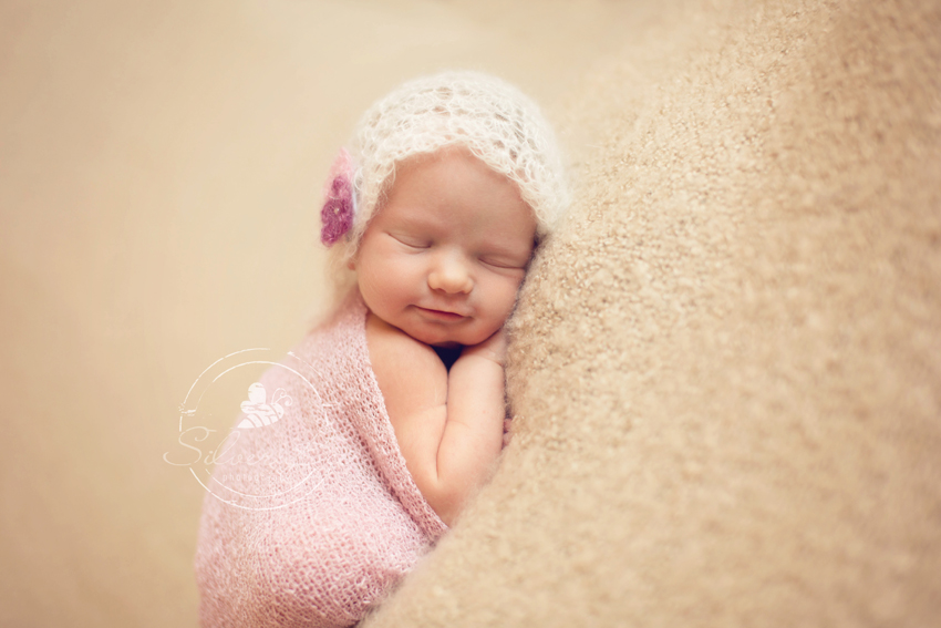 Newborn Photo Session: Silver Bee Photography