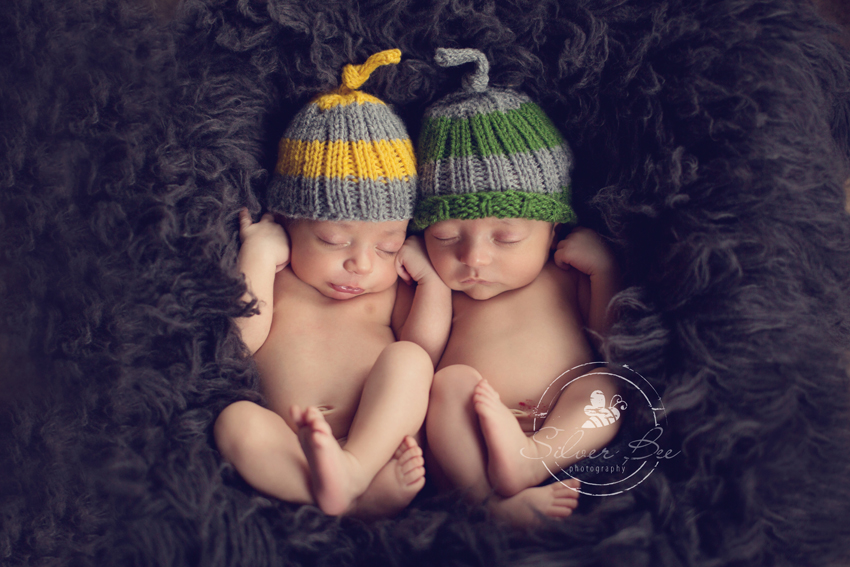 Twin baby boy newborn photography silver bee photography