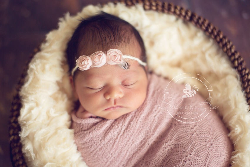 Best Austin Newborn Photographer in Austin Texas with newborn baby girl with pink roses and feather headband.