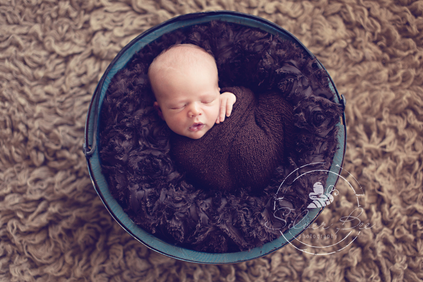 5 Day old newborn baby in bucket for photo session austin