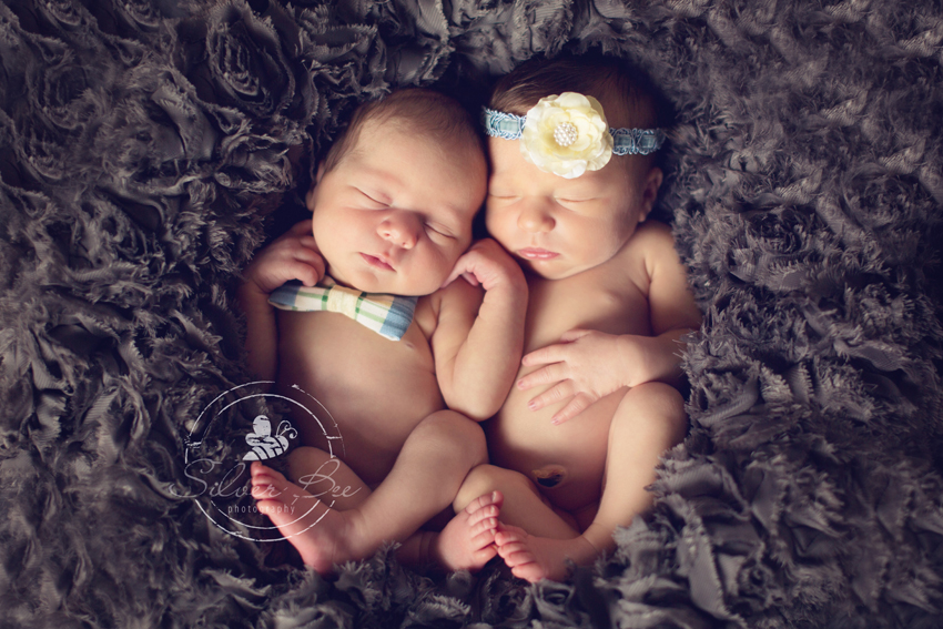 Newborn Twin Photo Session: Silver Bee Photography