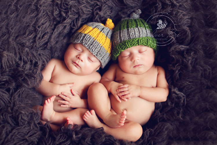 Newborn Twins Silver Bee Photography