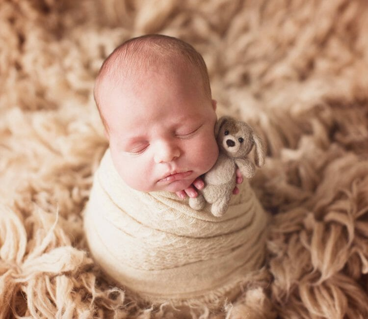 professional newborn photographer austin tx