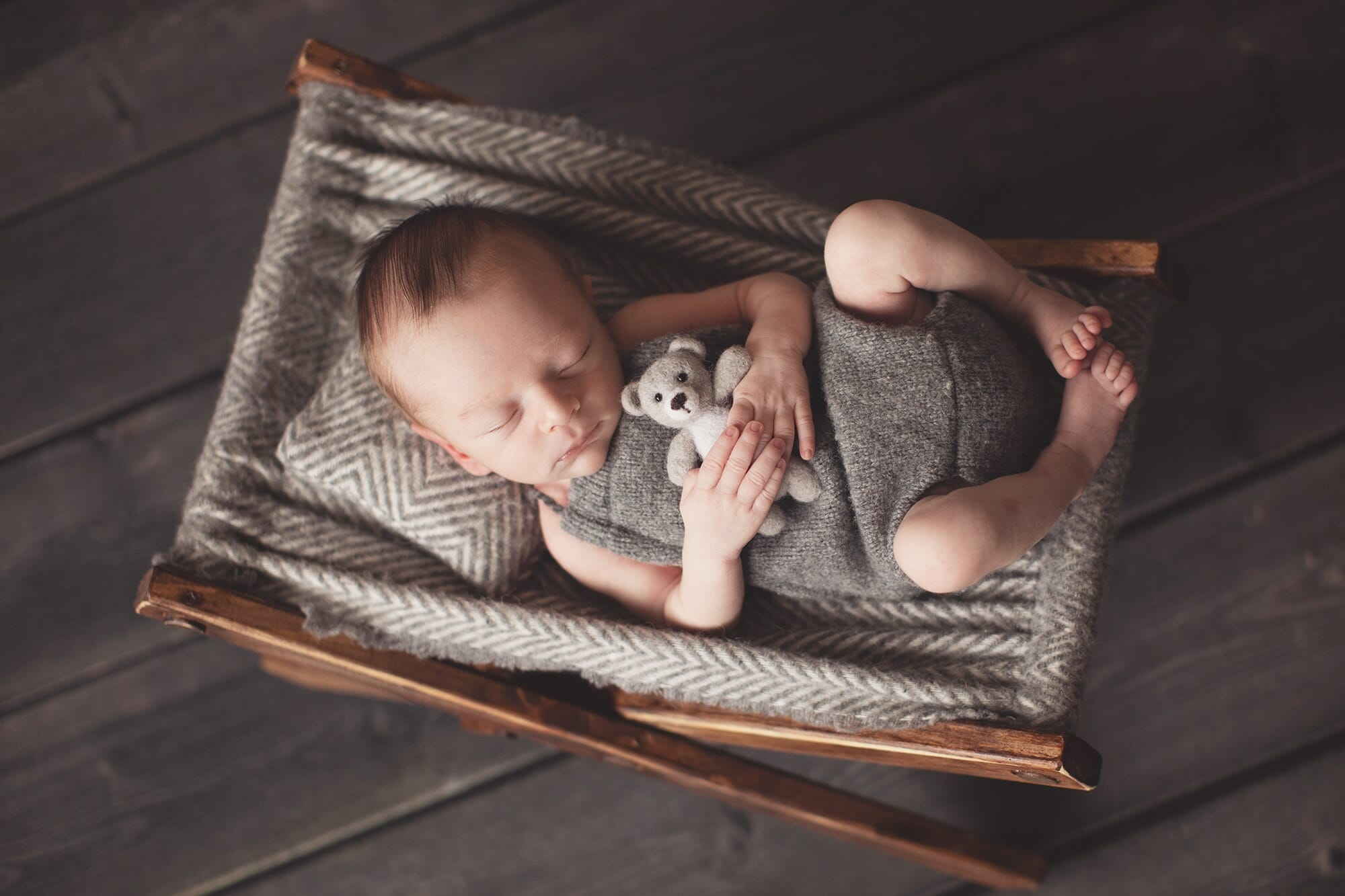 Professional Newborn Photography | Silver Bee Photography